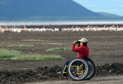 A participant in a wheelchair uses binoculars to view a flock of white birds on the shore of Lake Nakuru.