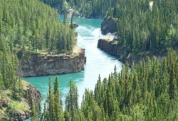 Looking down on the aquamarine waters of the Porcupine river from the rocky, tree-covered cliffs above.