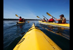Apostle Islands Paddle, Pinot, and Porter dates and details button