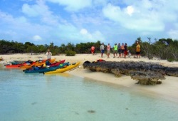 The Wilderness Inquiry sea kayaking group pulls their colorful kayaks onto a sandy beach for a lunch break in the Bahamas.