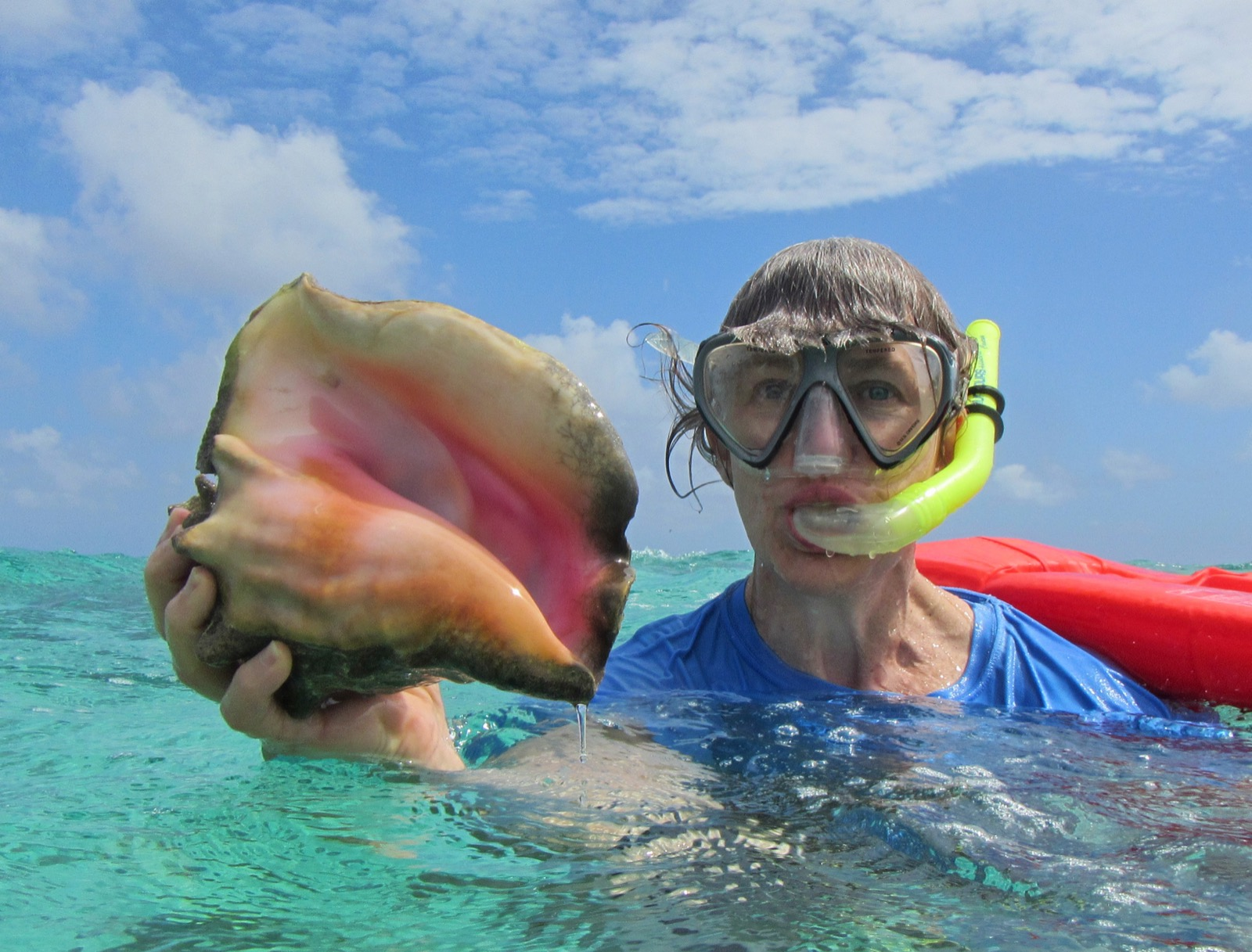 Young boy finds a large sea shell while swimming in Belize