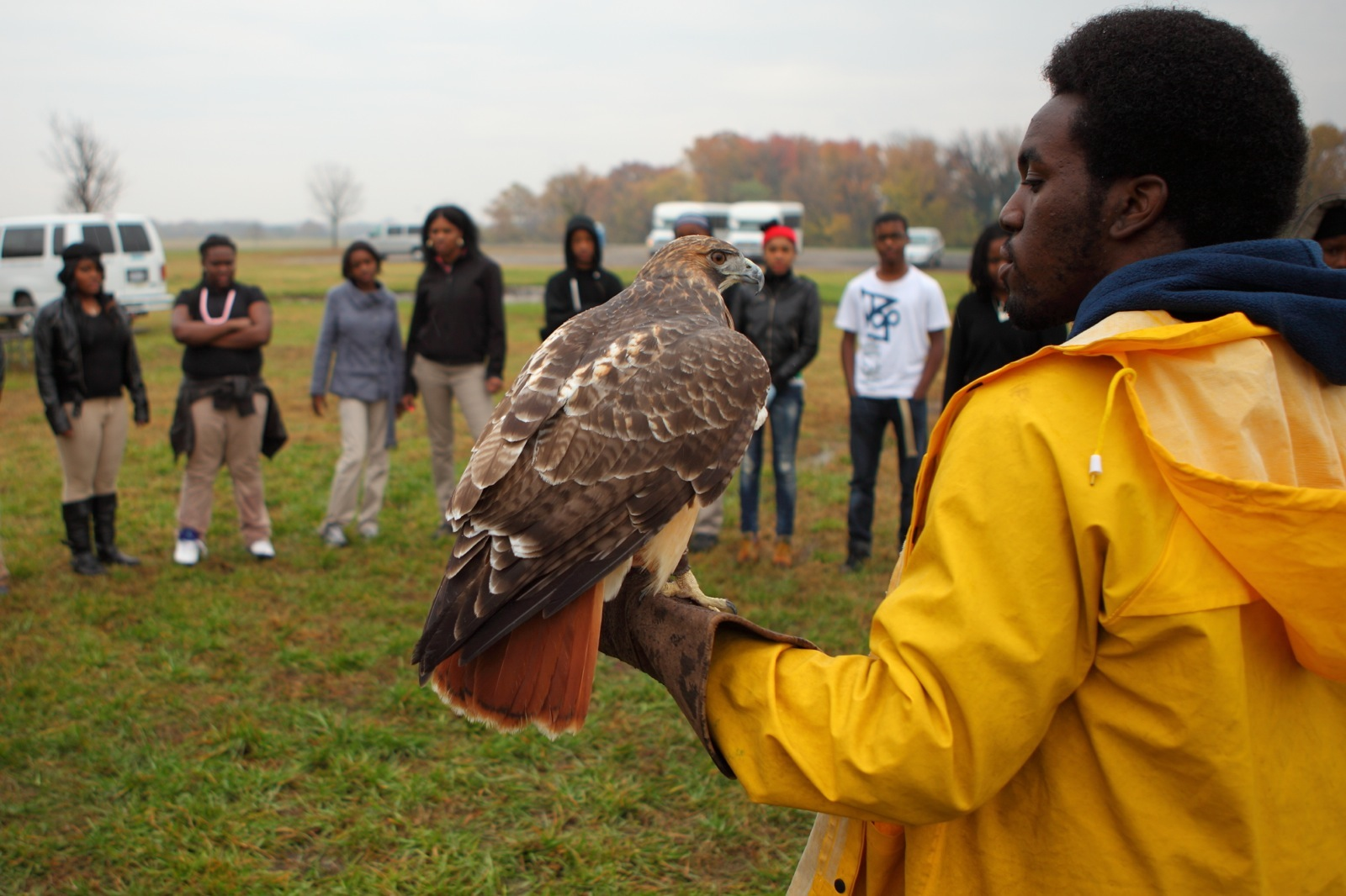 A birds of prey show in the  Anacostia National Park