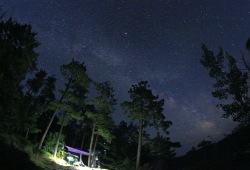 a photo of the milky way night sky above the camp site