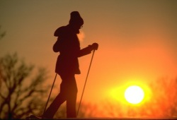 Silhouette of a cross country skier moving across the land with a sunset in the background.
