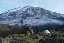 A tent at the campsite in front of the towering, snowy dome of Mt. Kilimanjaro.