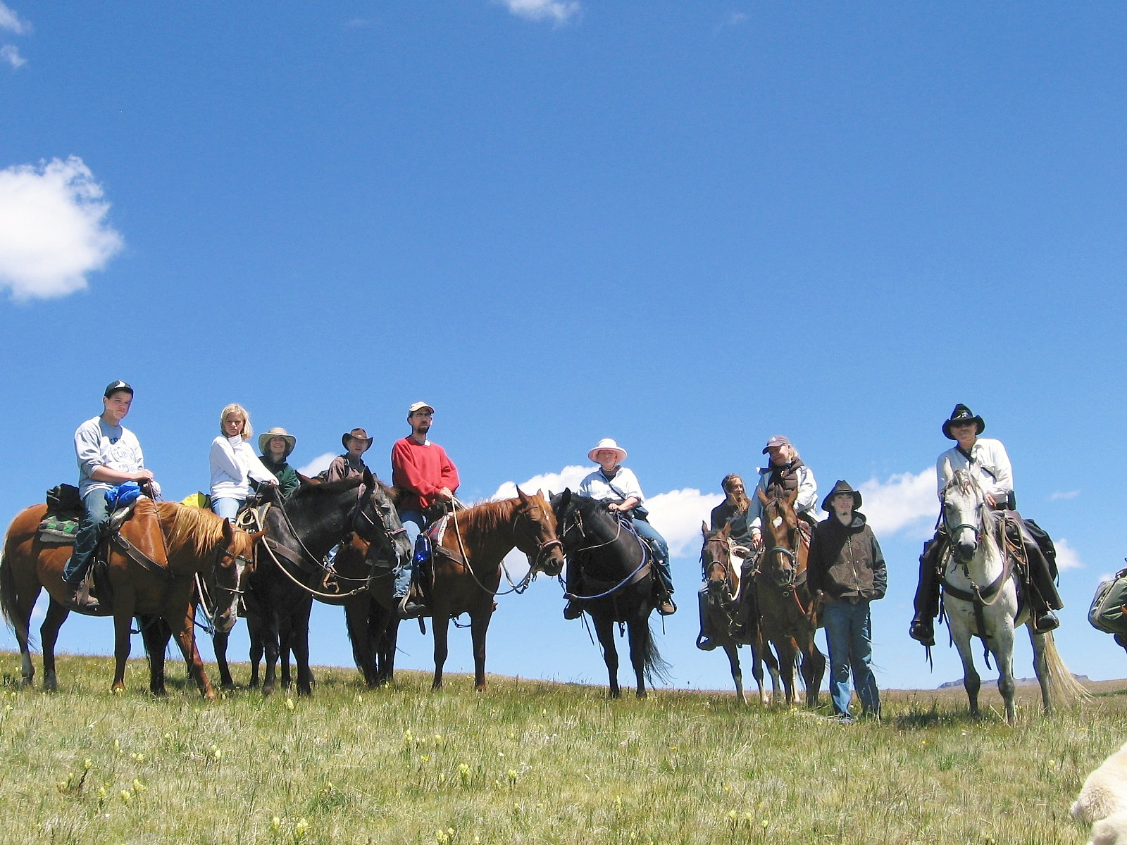 A large group of people on horseback posses under the open ski of Colorado.