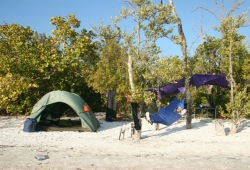 A participant naps in a hammock by his tent at camp in the Florida Everglades.