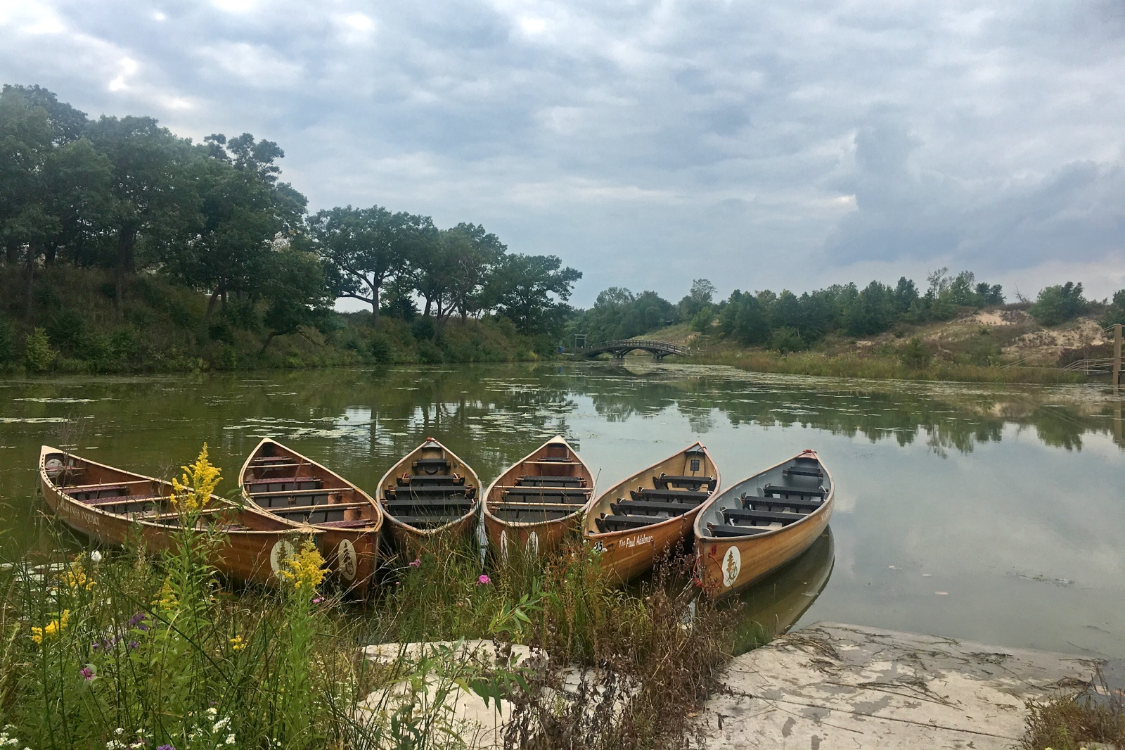 a photo of 6 empty canoes sitting on the shore of a calm river surrounded by vegetation