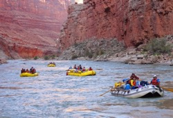 Four paddle and oar rafts float the Colorado River beneath the  towering walls of Arizona's Grand Canyon.