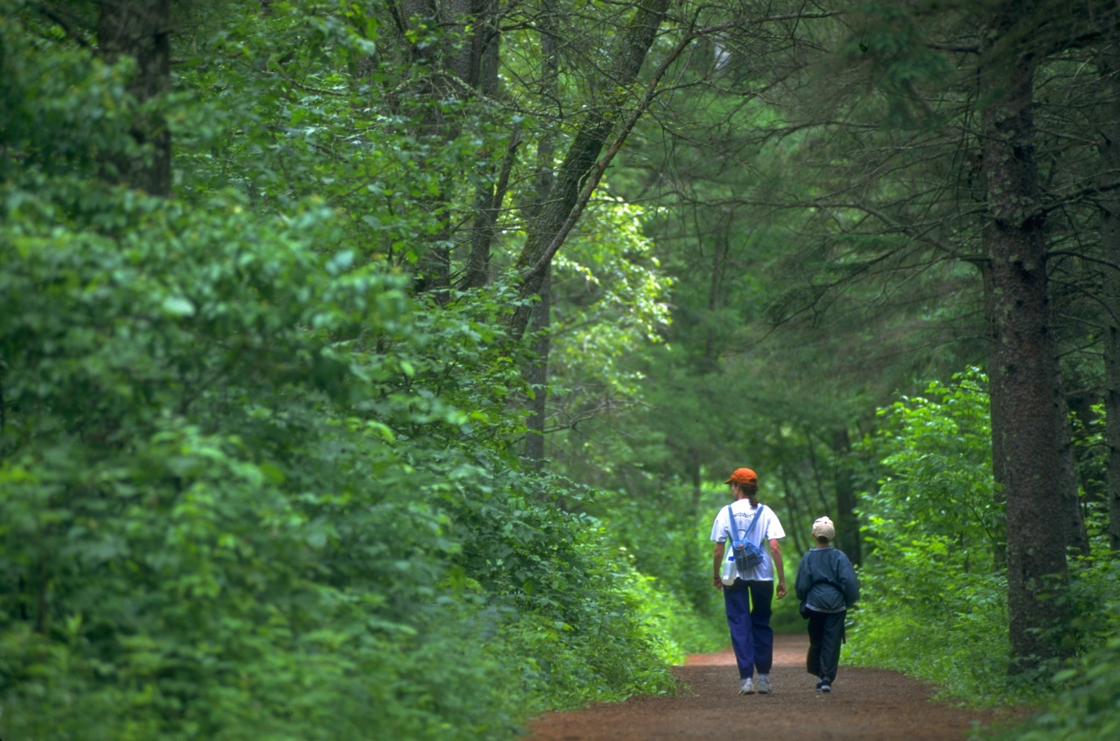 A mother and her son take a walk down a forested lane in Itasca State Park near Lake Itasca.