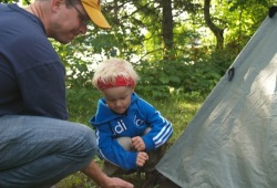 A father helps his son learn how to stake down a tent in Itasca State Park.