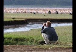 A man squats down and uses binoculars to get a closer look at hundreds of pelicans and flamingoes standing in the shallows of Lake Nakuru.