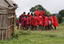 A group of Maasai men, dressed in red, gather in a circle and have a jumping competition, which the tribe is known for.