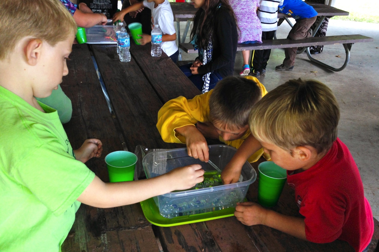 three young boys searching through a bucket of water for an environmental education activity