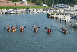 a group of seven canoes sit in the water near the landing while the participants hold their paddles above their heads