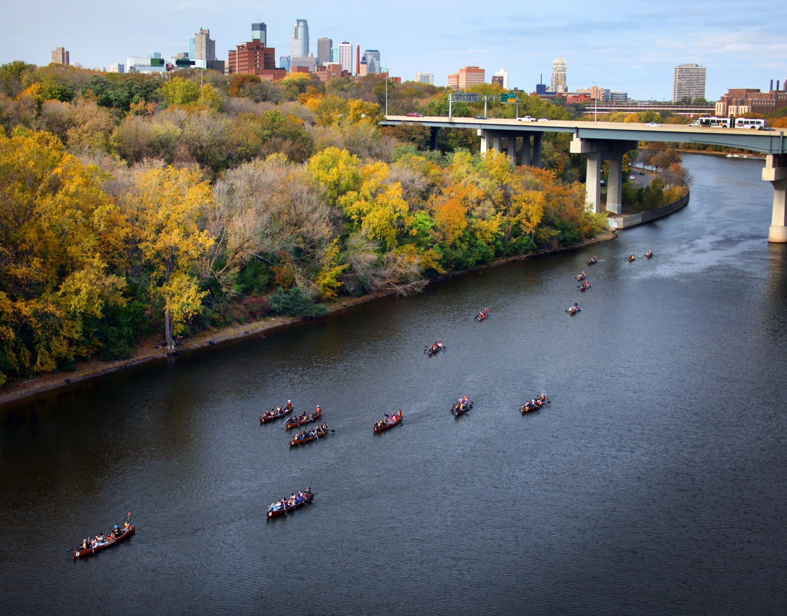 Fifteen voyageur canoes paddle the Mississippi River, with a view of not only brightly colored fall trees but also of the downtown Minneapolis skyline.