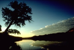 The sun rises over the Missouri River near Judith Landing, silhouetting trees and the walls of the canyon.