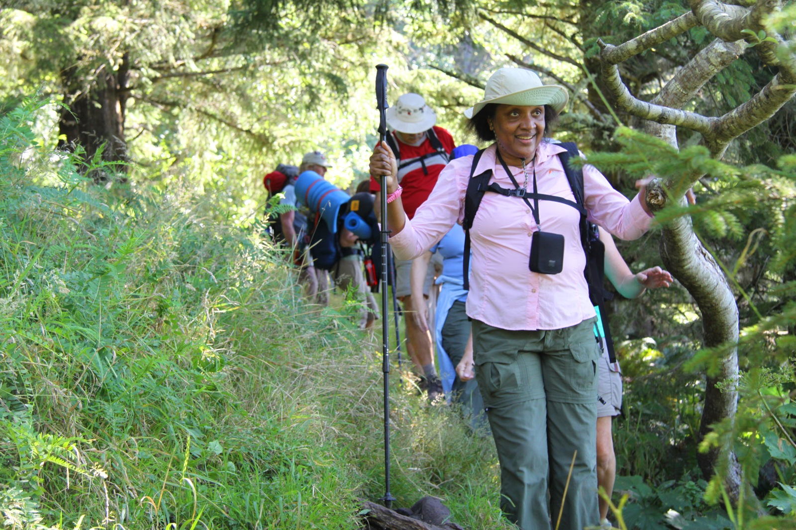 A group hikes in a line along a grassy, tree-lined hill in Olympic National Park.