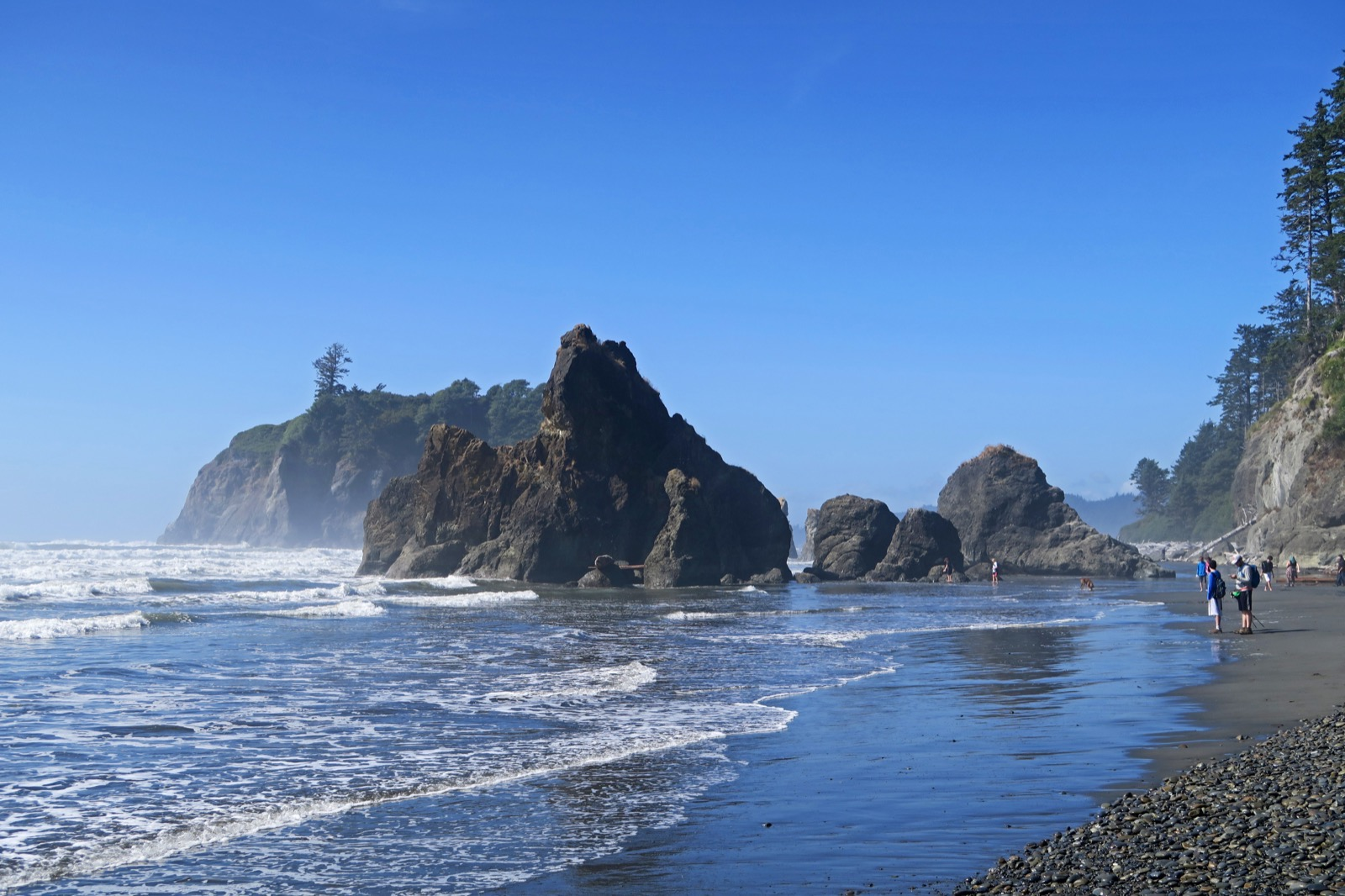 Olympic National Park Hike and Explore