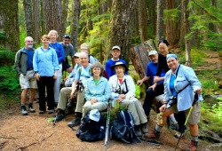 A hiking group takes a break in the Hoh Rain Forest, surrounded by large trees.