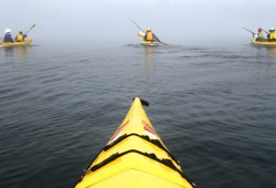 Four sea kayaks in the fog near the Slate Islands on a calm morning in Lake Superior.