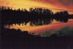 A red, yellow, and orange sunset silhouettes the pine trees on Lake Superior's Slate Islands.