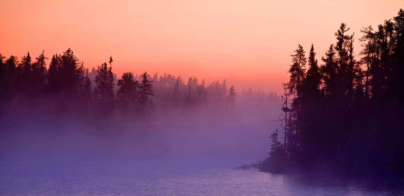 Fog rolls through an opening between two islands as the setting sun silhouettes pine trees.