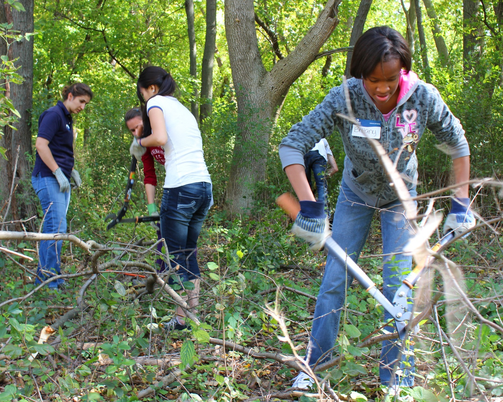 a group of 5 students use garden tools to remove invasive plant species