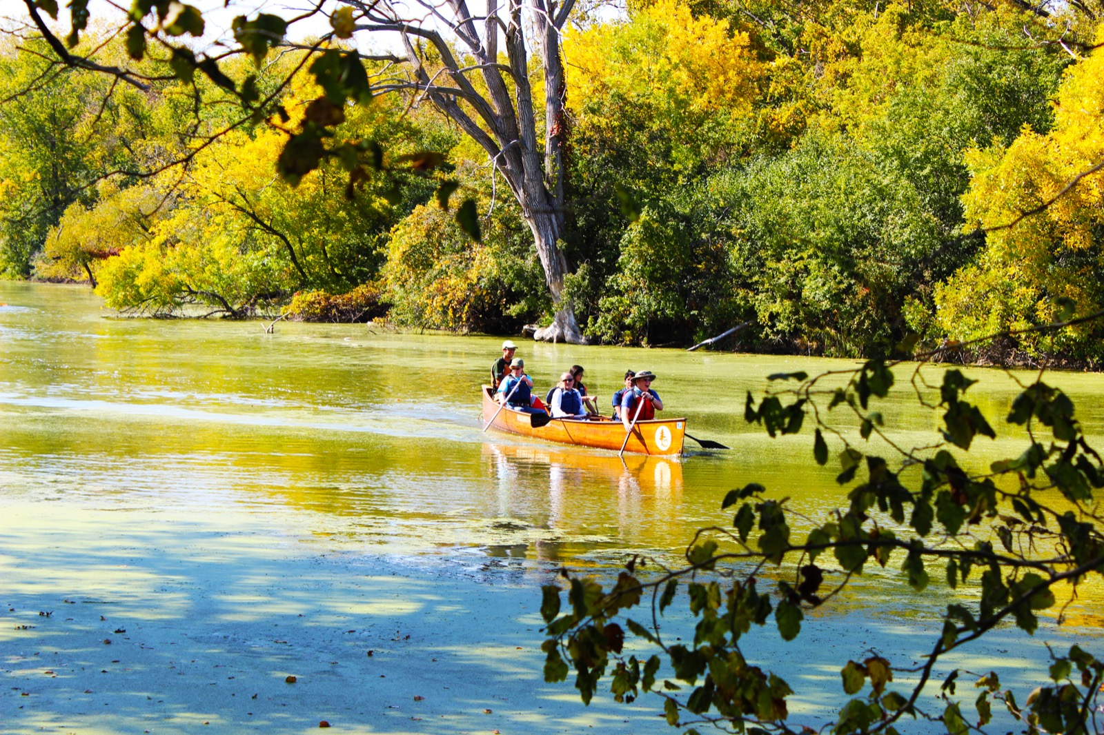 Students from Winnetka, Illinois paddle a Voyageur canoe