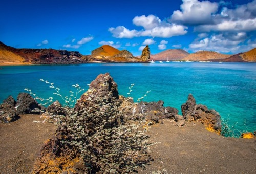 Galapagos Hike and Explore