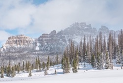 Yellowstone Winter Ski and Explore